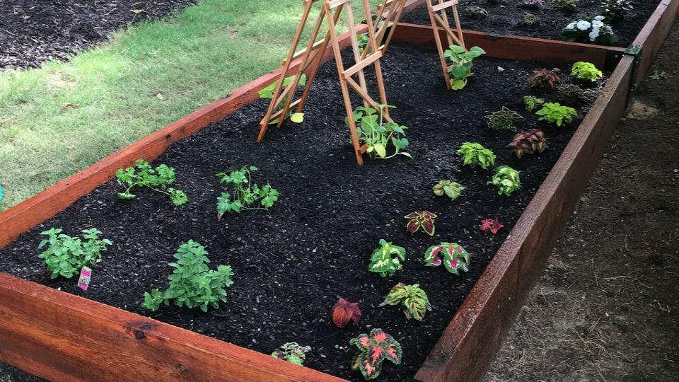 Tending the Garden Summer Series Begins June 15th